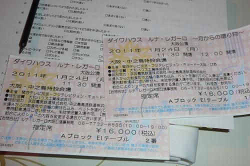 P1040098.JPG.jpg